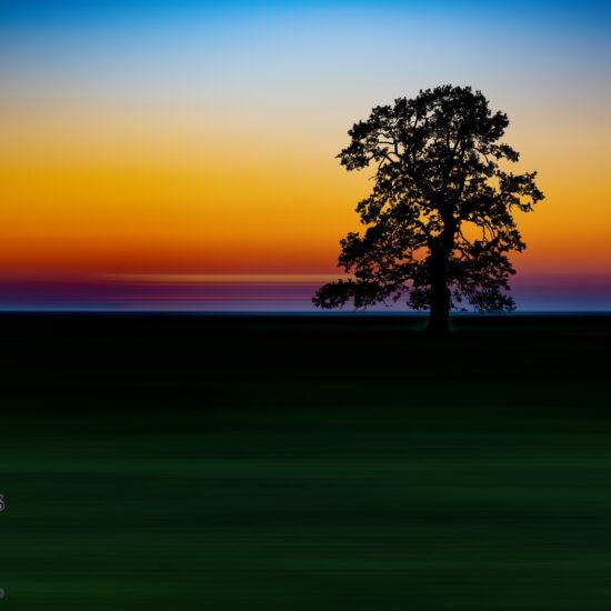 Landscape -Peisaj